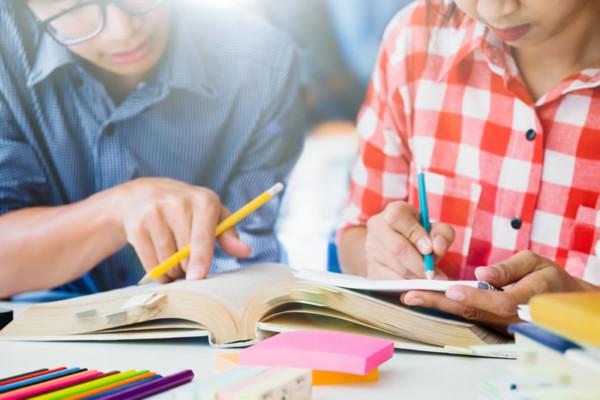 Educativa Scolastica - Cooperativa Delfino